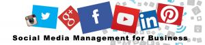 social media managment for business